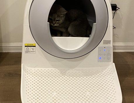 Máy dọn vệ sinh cho mèo tự động – có đáng tiền?